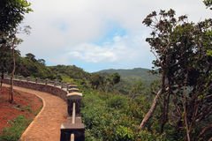 Observation deck in Canyon of Black River park. Mauritius Royalty Free Stock Photos