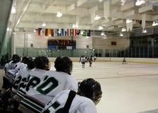 Observation du jeu d'hockey images libres de droits