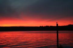 Observation du lever de soleil Photo libre de droits