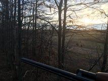 Observation du lever de soleil d'un Treestand photo libre de droits