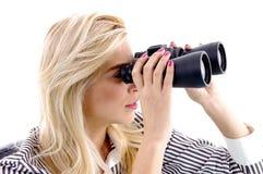observation femelle binoche de verticale Photos libres de droits
