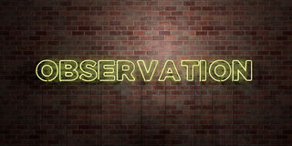 OBSERVATION - fluorescent Neon tube Sign on brickwork - Front view - 3D rendered royalty free stock picture Stock Photo