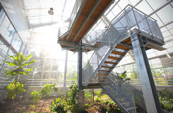 Observation platform at the greenhouse Stock Photo