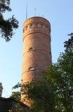 Observation tower Pyynikin Näkötorni stock photos
