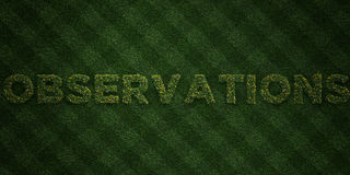 OBSERVATIONS - fresh Grass letters with flowers and dandelions - 3D rendered royalty free stock image Stock Photos