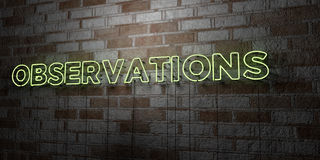 OBSERVATIONS - Glowing Neon Sign on stonework wall - 3D rendered royalty free stock illustration Stock Photography