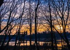 Observationsplattform med träd på solnedgången Arkivbild