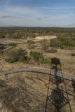 Observationstorn nära den Bela fröskidaBezdezem staden Arkivfoton