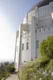 observator Royaltyfri Foto