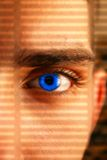 Observer. Alien eye wacher looking through a lattice of a shadow royalty free stock photos