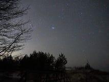 Observer de Pleiades de constellation de Taureau d'étoiles de ciel nocturne images stock