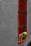 Obserwatora pies Obrazy Royalty Free