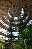 obserwatorium spacer odgórny drzewny Zdjęcie Stock