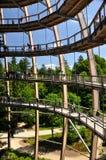 obserwatorium spacer odgórny drzewny Obrazy Stock