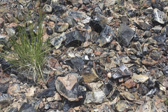 Obsidian Glass On Desert Ground Background Stock Photos