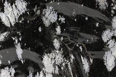Obsidien de flocon de neige photo libre de droits