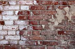 Obsolete brick wall half painted in white Royalty Free Stock Image