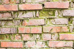 Obsolete brick wall with significant signs of wear Royalty Free Stock Image