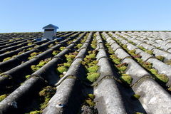 Obsolete and mossy roof Stock Photos