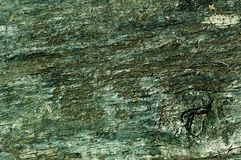 Obsolete painted wood. Obsolete weathered cracked green painted wood background Stock Image