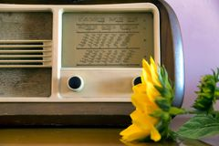 Obsolete radio in wooden case. Obsolete radio in wooden case and flower Stock Photography