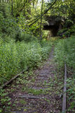 Obsolete railway track at a forest Royalty Free Stock Photography