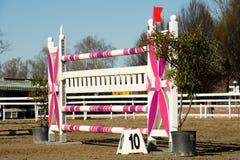 Obstáculo cor-de-rosa em um campo foto de stock royalty free