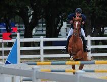 Obstáculo del Equestrianism fotografía de archivo libre de regalías