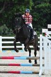 Obstáculo del Equestrianism foto de archivo