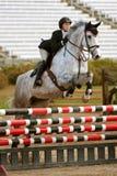 Obstáculo desobstruído do cavaleiro e do cavalo no evento equestre Imagem de Stock Royalty Free