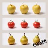 Obst und Gemüse? geklont! Stockbild