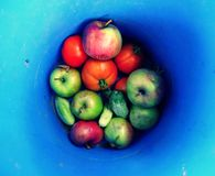 Obst und Gemüse von einem Sommer arbeiten auf einem blauen Hintergrund im Garten Lizenzfreie Stockbilder