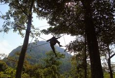 Obstacle de corde de Web entre les arbres image stock