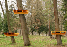 Obstacle. Wooden platform attached to the tree for the tourist strip obstacles royalty free stock photos