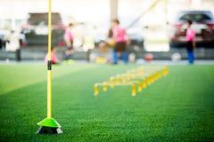 Obstacles et exercices jaunes d'échelle sur le gazon artificiel vert avec le football trouble d'entraîneur et d'enfant photo libre de droits