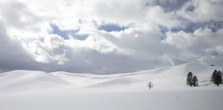 Obstancy av bisonen som betar på den snöig backen i Yellowstone Natio arkivfoto