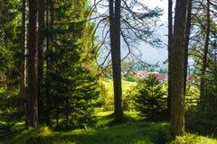 Obsteig in Sonnenplateau, Austria Fotografie Stock Libere da Diritti