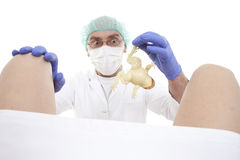 Obstetrician Stock Images