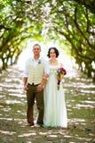 Obstgarten-Porträts der Braut und des Bräutigams Stockfotografie
