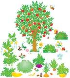 Obstgarten und Gemüsegarten Stockbild