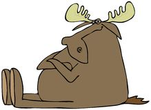 Obstinate moose Royalty Free Stock Photography