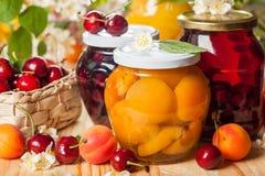 Obstkonserven und Beeren Lizenzfreie Stockfotos