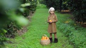 Obstkorbmädchen mit Orange in den Händen stock video footage