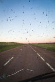 Obstructed windshield with bugs and cracks (vertical). Bugs cover a broken windshield with a blurry highway in the background Stock Photo