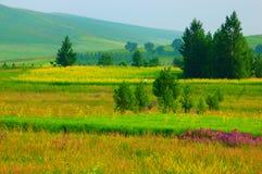 Obszarów trawiasty krajobrazy Fotografia Royalty Free