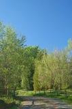obszarów wiejskich wiosna Fotografia Royalty Free