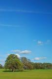 obszarów wiejskich wiosna Zdjęcia Stock