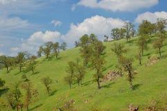 obszarów wiejskich wiosna Zdjęcie Stock