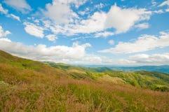 Obszar trawiasty i góry Tajlandia fotografia stock