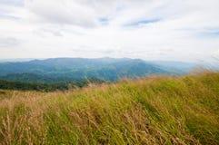 Obszar trawiasty i góry Tajlandia zdjęcia royalty free